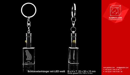 Voransicht-Staack-Loewe-Schluesselanhaenger_LED_hoch